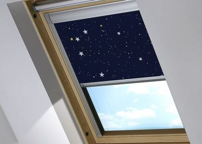 skylight_jpg_pagespeed_ce_BCnRVTf-fW