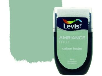 Levis Ambiance mur colour tester verf